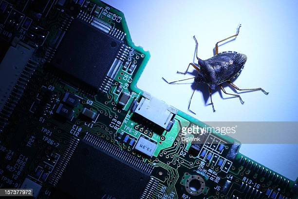 computer bug - computer bug stock photos and pictures