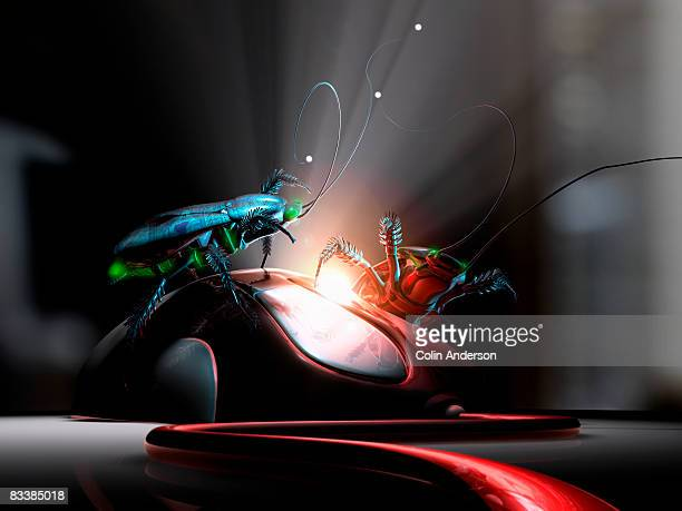 computer bugs - computer virus stock pictures, royalty-free photos & images
