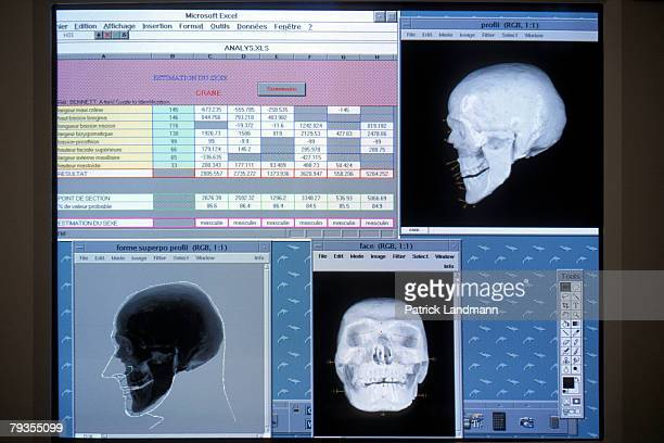 Computer graphics at the anthropology laboratory in the French police force's criminal research institute whose facilities were used to create a...