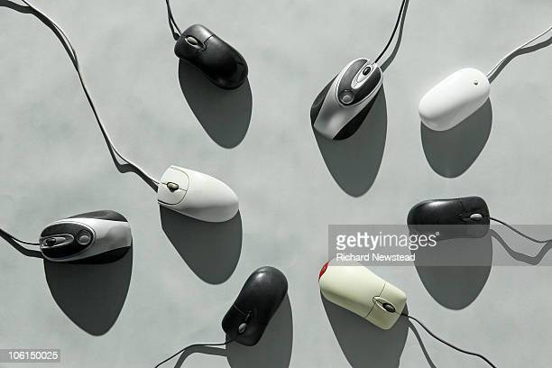 computer mice - computer mouse stock pictures, royalty-free photos & images
