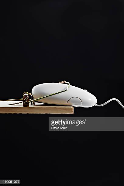 computer mouse in a mouse trap