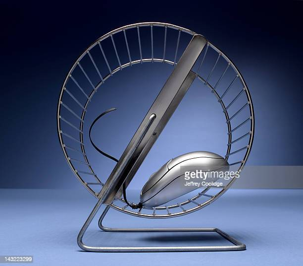 Computer Mouse on Exercise Wheel
