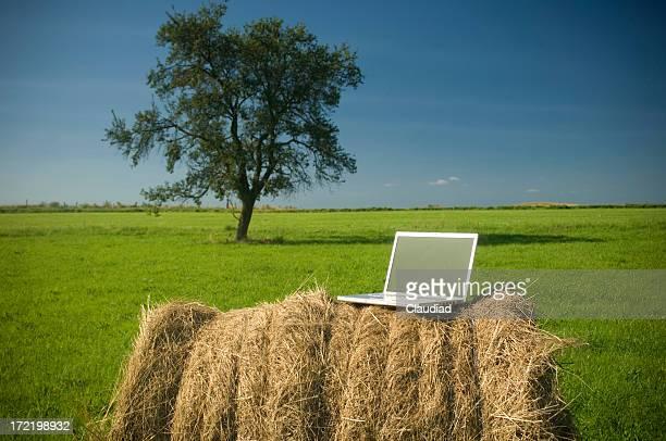 Computer outdoor