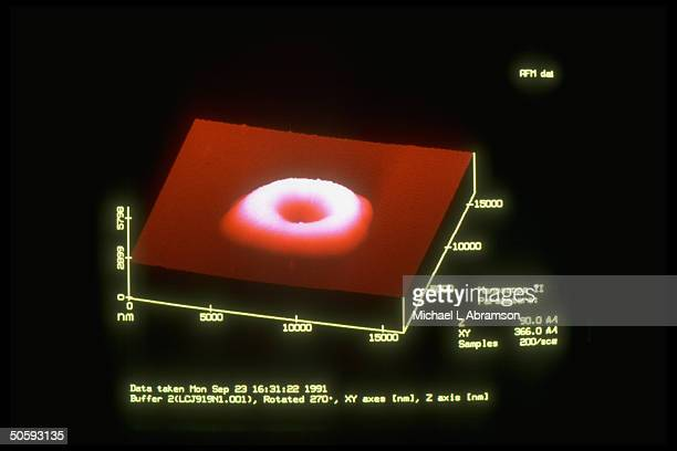 Computer screen image made by Atomic Force Microscope of whole human red blood cell AFM uses electromagnetic force to probe on atomic level