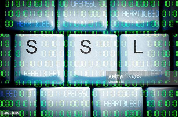 Computertasten mit SSL-Schriftzug und Binärcode, Sicherheitslücke Heartbleed in OpenSSL
