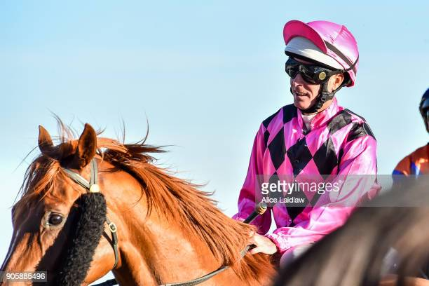 Comrade Ned ridden by Luke Nolen returns to scale after winning the Ladbrokes Cash Out at Caulfield Racecourse on January 17 2018 in Caulfield...