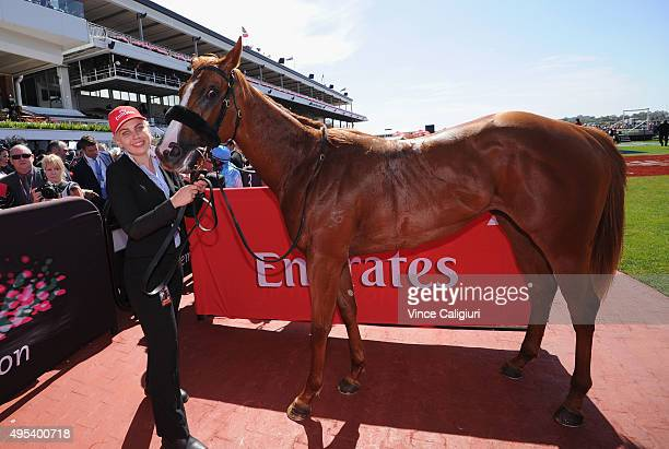 Concealer after winning race 1 the Emirates Airlines Plate on Melbourne Cup Day at Flemington Racecourse on November 3 2015 in Melbourne Australia