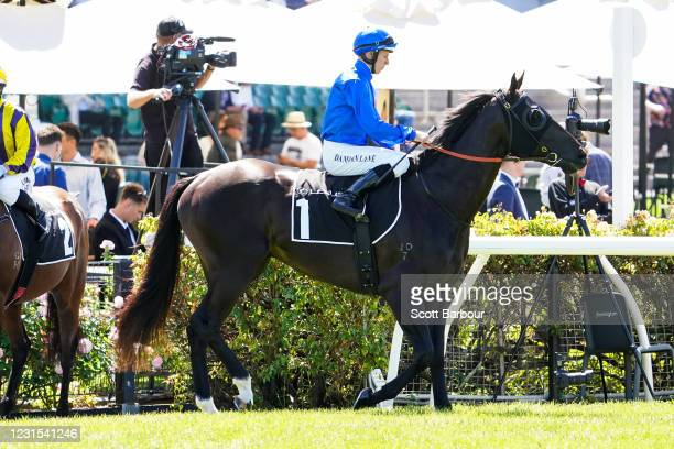 Conceited ridden by Damian Lane heads to the barrier before the 2021 Lexus Melbourne Cup Tour at Flemington Racecourse on March 06, 2021 in...