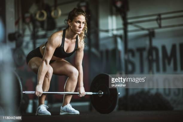 concentrado atlética mulher exercitando deadlift em um ginásio. - desempenho atlético - fotografias e filmes do acervo
