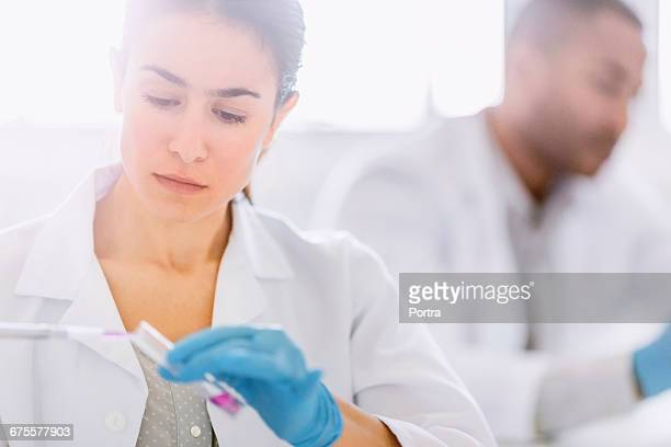Concentrated chemist using pipette in laboratory