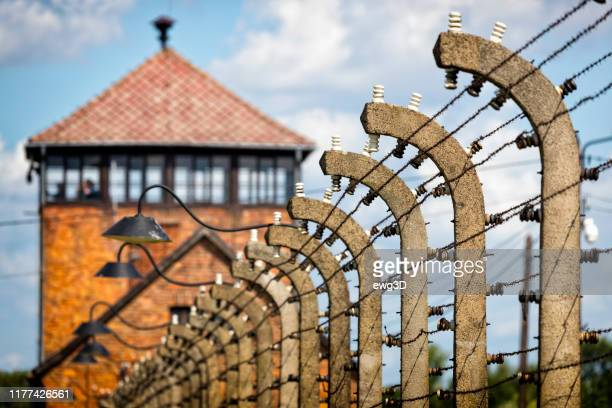concentration camp auschwitz birkenau in oswiecim, poland - auschwitz stock pictures, royalty-free photos & images