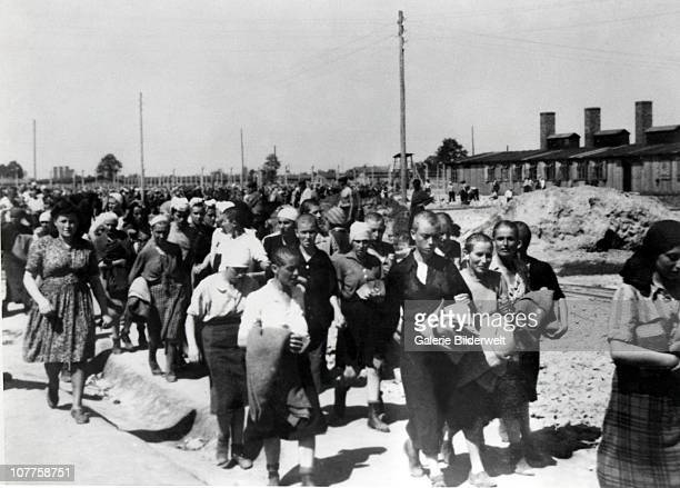 Concentration Camp Auschwitz Hungarian women who have been selected to work at AuschwitzBirkenau June 1944 Their heads have been shaved to control...