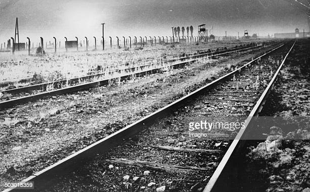 Concentration Camp Auschwitz Poland Photograph 1964