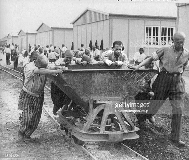 Concentration camp political prisoners in Germany 1930s, in prison uniform, engaged in forced labour.