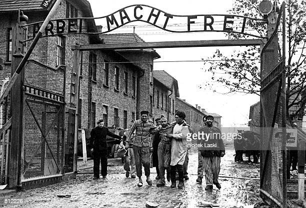 Concentration camp victims are led through the Auschwitz-Birkenau camp gate in 1945 in this photo found recently in Moscow. Auschwitz, which is known...