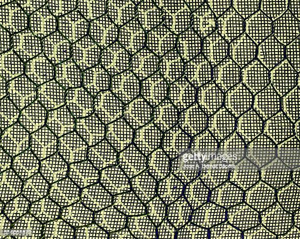 Concentric forms in the shape of rhombus on a blackground of wire gauze of  green color