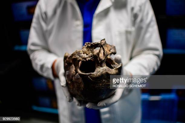 Concepcion Gimenez physical anthropologist and academic responsible of the Osteoteca at the Anthropology National Museum shows the skull of the Man...