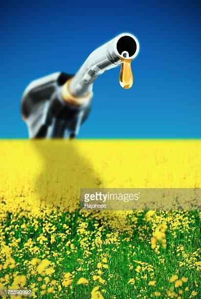 Concept Bio fuel