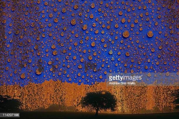 concept of a landscape being corroded by acid rain - acid rain stock photos and pictures