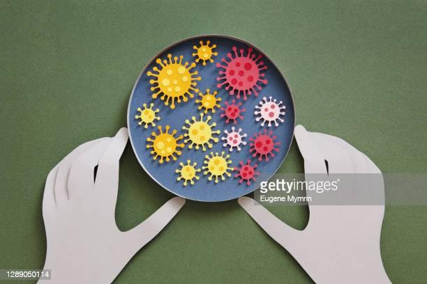 concept of coronavirus testing - variação - fotografias e filmes do acervo