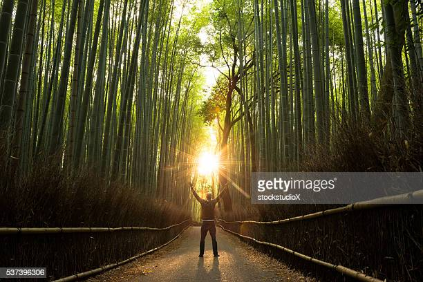concept of success in a natural setting - spirituality stockfoto's en -beelden
