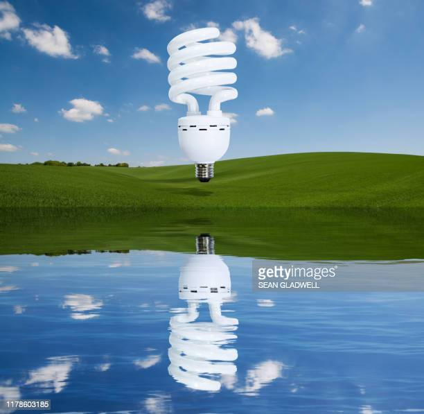 concept photo of spiral light bulb reflection - energy efficient lightbulb stock pictures, royalty-free photos & images