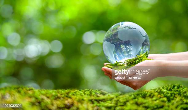 concept save the world save environment the world is in the grass of the green bokeh background - world kindness day - fotografias e filmes do acervo