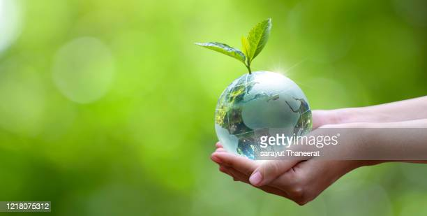 concept save the world save environment the world is in the grass of the green bokeh background - environmental issues stock pictures, royalty-free photos & images