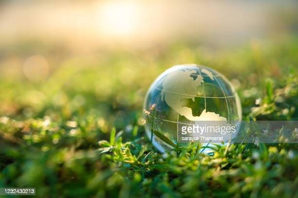 concept save the world save environment the world is in the grass of the green bokeh background - earth day stock pictures, royalty-free photos & images