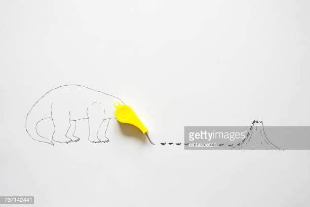 Conceptual anteater