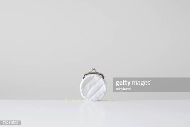 Conceptual cheese purse