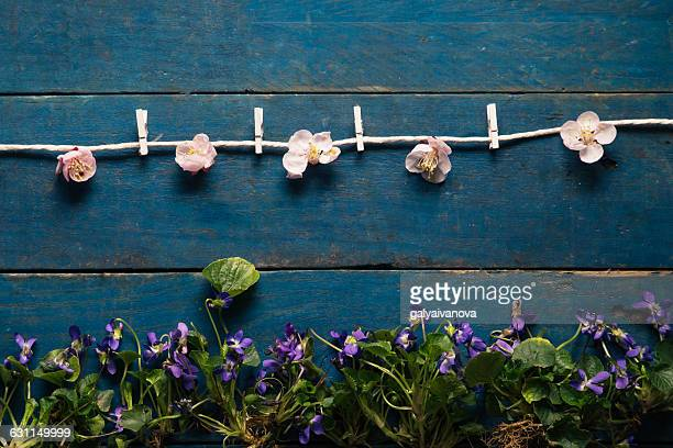 Conceptual clothes line made of flowers
