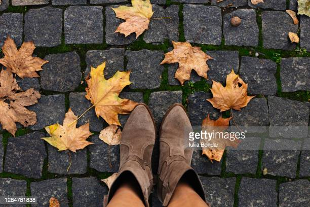 conceptual image of legs in boots on the autumn leaves. - gold shoe stock pictures, royalty-free photos & images