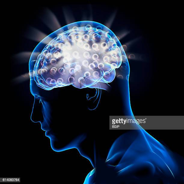 Conceptual image of the brain Brain and digital