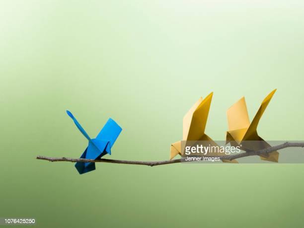 conceptual nature - 3 origami birds sitting on a branch. - origami foto e immagini stock