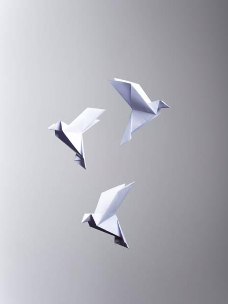 Conceptual Nature 3 White Origami - Fine Art prints