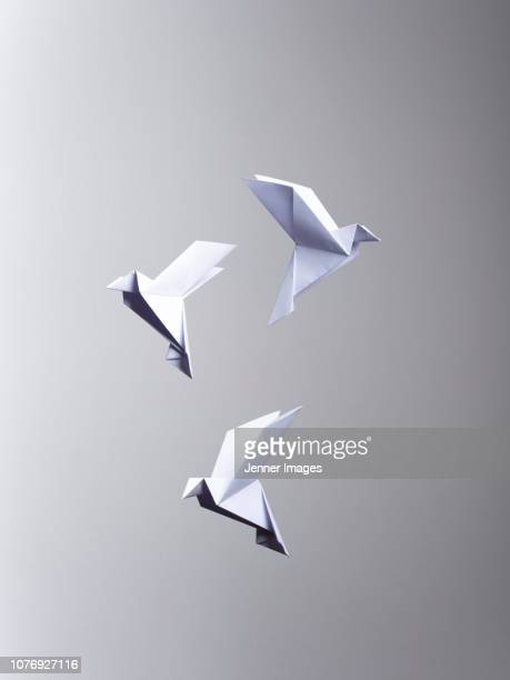 conceptual nature - 3 white origami birds flying. - vogel stock-fotos und bilder