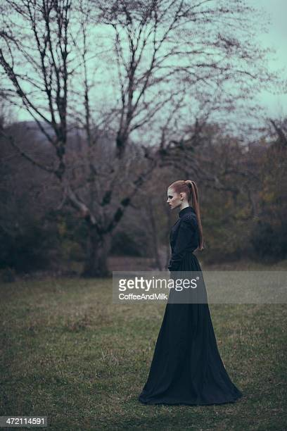 conceptual portrait of a woman at the forest - black widow spider stock photos and pictures