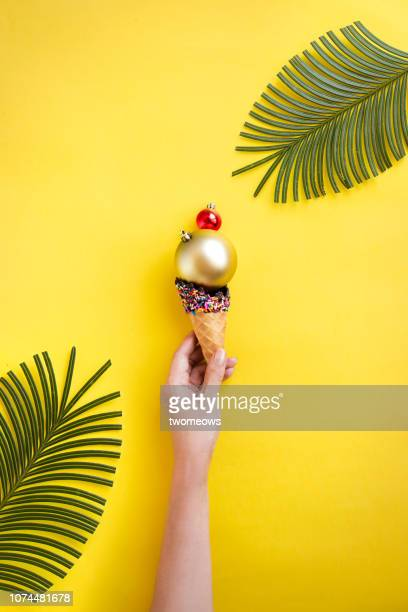 conceptual summer christmas still life. - southern christmas stock pictures, royalty-free photos & images