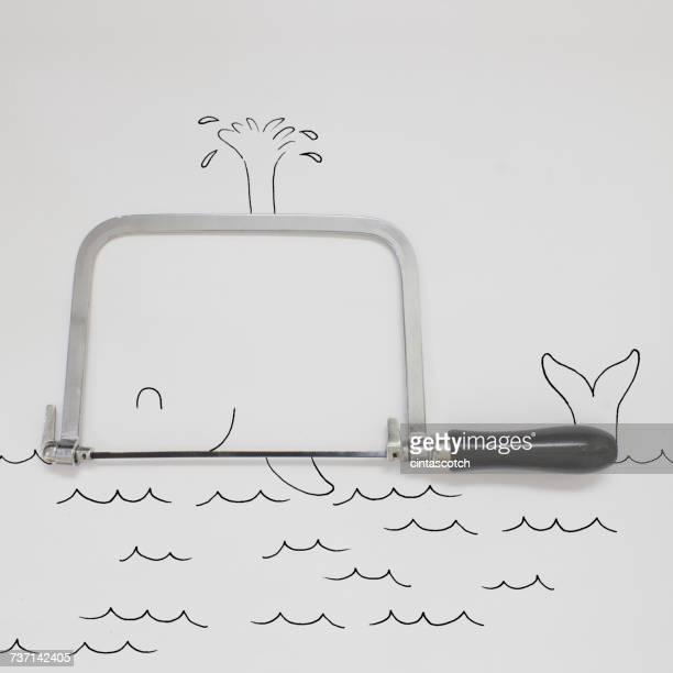 Conceptual whale