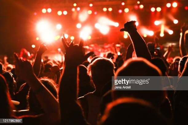 concert audience, rear view concert crowd, music festival - ポップコンサート ストックフォトと画像