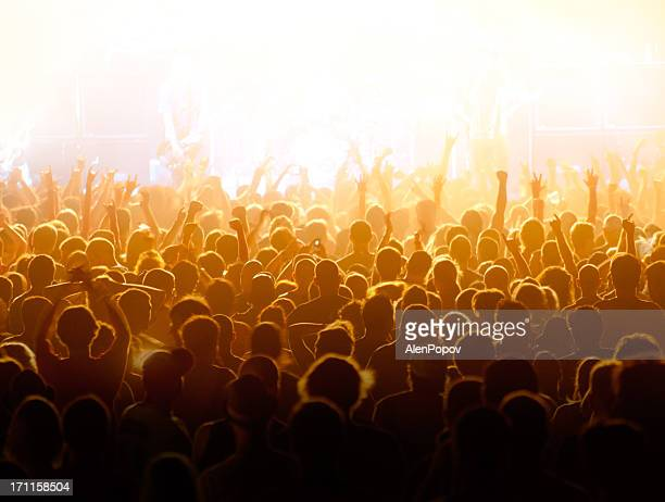 concert crowd - filter band stock photos and pictures