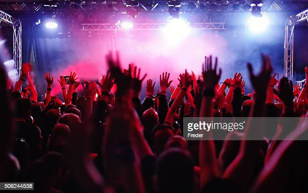 concert crowd - modern rock stock pictures, royalty-free photos & images
