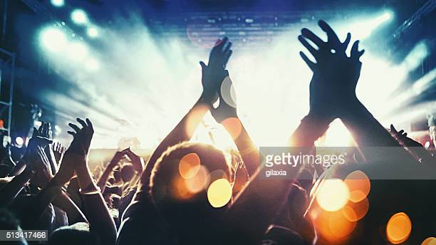concert crowd. - music festival stock pictures, royalty-free photos & images