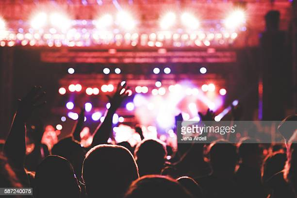 concert crowd - concert hall stock pictures, royalty-free photos & images
