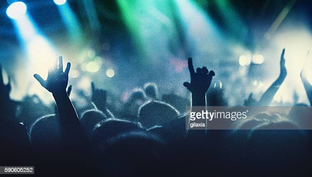 concert crowd. - crime stock pictures, royalty-free photos & images