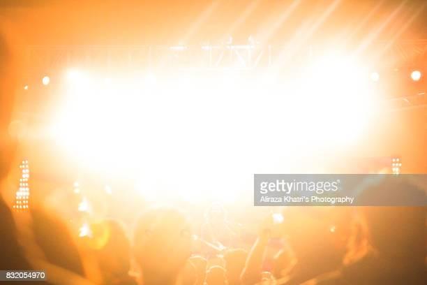 Concert diaries silhouette