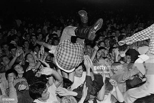 A concert goer dives into the 'mosh pit' during a 1982 punk rock concert performed by Fear at the Country Club in Reseda California