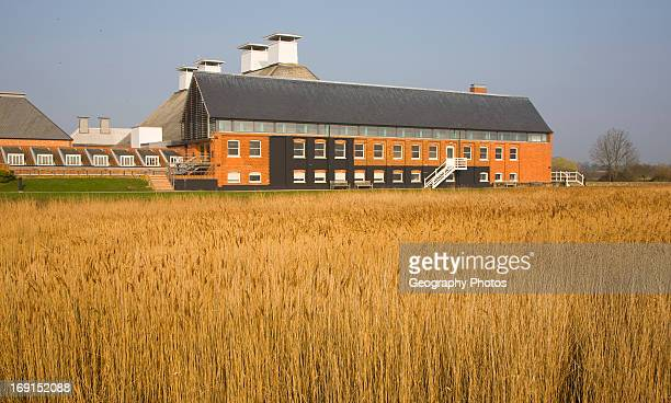 Concert hall seen over reeds at Snape Maltings Suffolk England