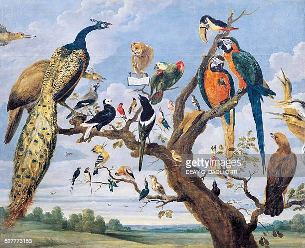 Concert of birds by Paul de Vos Netherlands 17th century Bilbao Museo De Bellas Artes De Bilbao